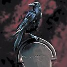 Raven on a Tomb by Yair Mor