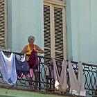 Hanging Havana by Louise Mackley