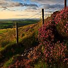 Sunset views over Lancashire by Shaun Whiteman
