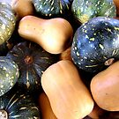 Gorgeously Organic by Janie. D
