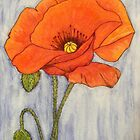 Single Red Poppy by Alexandra Felgate