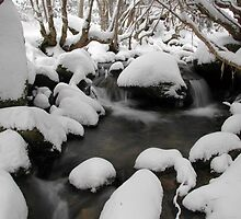 Fresh Snowfall - Merritts Creek, Thredbo, Australia by Mike Banks