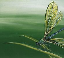 Dragonfly by Clare Brooks