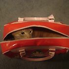 The Cat's in the Bag! by kimathy