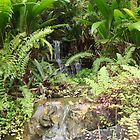 Backyard Waterfall by kimathy