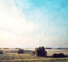 Fields by mariakallin