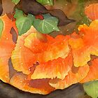 Orange Delight!  Fungi by Diane Hall