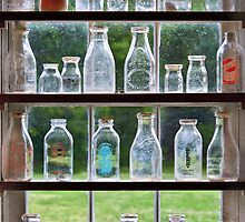 Hobby - Collector - Milk Bottles  by Mike  Savad