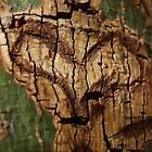 heart made of wood. by Amanda Huggins