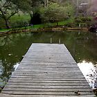 Pond pier by mindfulmimi