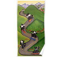 Skateboarding Nuns Poster