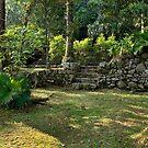 Primeiro Jardim no Porto das Naus- São Vicente-SP-Brasil by Gilberto Grecco