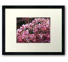 Colors of Summer - collage Framed Print