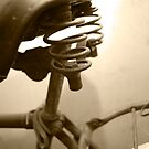 vintage bicycle seat by Vilma Bechelli