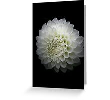 White darkness...the prophecy Greeting Card
