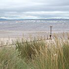 Beach - Findhorn, Moray, Scotland by wombat37
