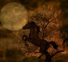 Moonlit Dance by Katy Breen