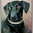 Black Lab by Connie Sonnenberg