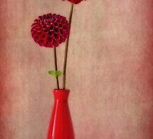 Rosso by Priska Wettstein