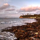 Queenscliff Foreshore by Lynden