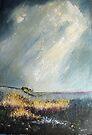North Yorkshire Moors by Sue Nichol