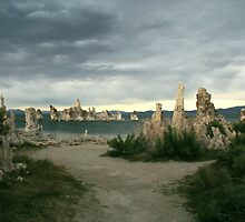 Tufa Forest, Mono Lake, CA. by macgirlamy