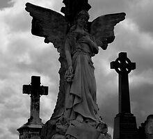 Stone Angel by Anthony Sarow