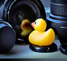Rubber Ducks  Featuring... Maurice!! by Susana Weber
