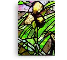 Iris in Quartz and Glass Canvas Print