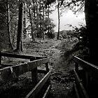 bridge to nowhere by Neil Messenger