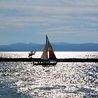 Sail Away With Me by Tammy F