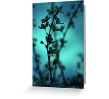 Blossom Blur Greeting Card