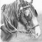 Working Horse by Ally Tate
