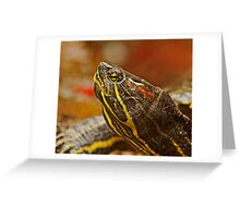 Portrait of a Turtle Greeting Card