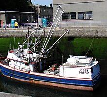 Emily Jane sank in Alaska by Honario