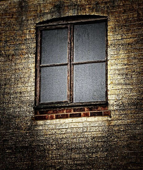 Window by Karen  Betts