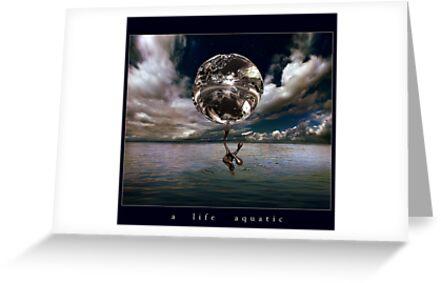 a life aquatic by ArtX