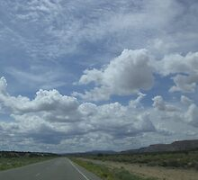 Road Trip New Mexico 2009 by Grace Barrera