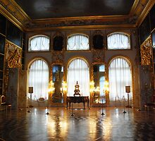 Entertaining room- Catherine's Palace by Jeddaphoto