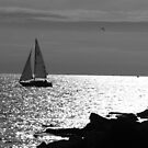 B&W Sail on Lake Michigan by BarbL