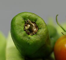 Green Pepper by Mark Baldwyn