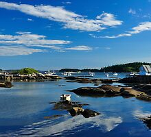 Boat, House, Stonington, Maine by fauselr