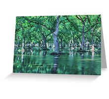 Flooded Walnut Orchard Greeting Card