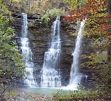 Twin Falls, Bufallo River Arkansas by David  Hughes