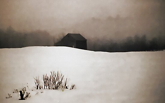 Old Barn - Fog & Snow by T.J. Martin