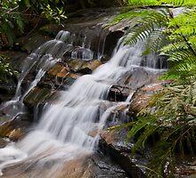 Leura Cascades by Chris  Randall