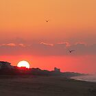 Pine Knoll Shores Sunrise by JGetsinger
