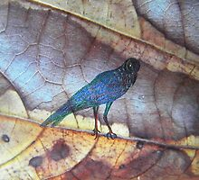 blue bird - leaf fantasy - natural world  by alyona firth