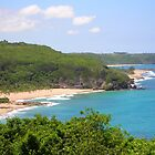 Aguadilla-from the Calle by Swan Diaz