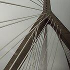 Through Boston Bridge-by car by Swan Diaz
